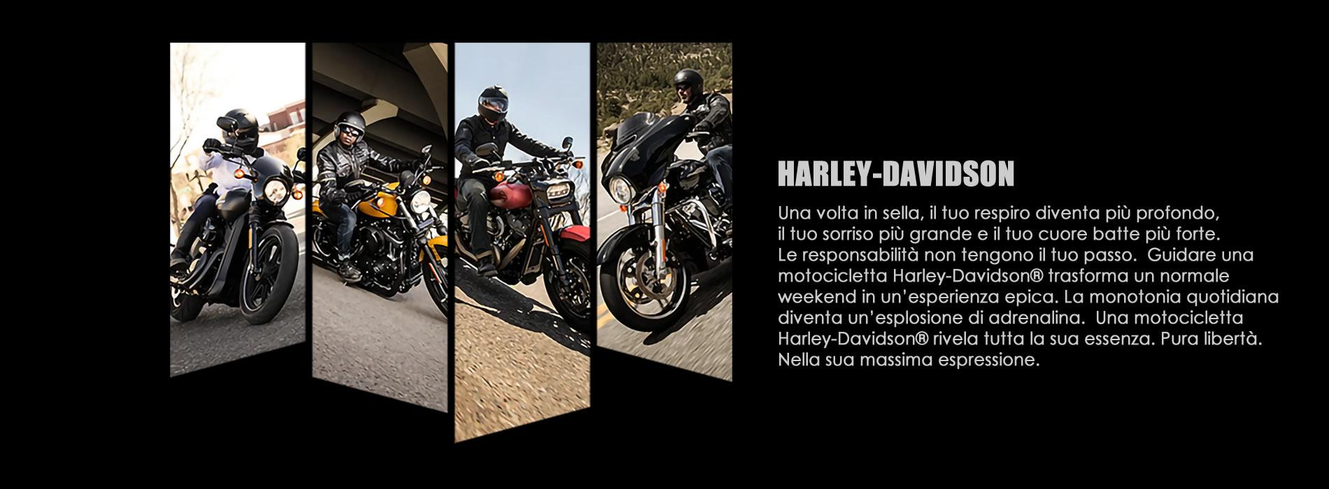 Harley-Davidson Arezzo